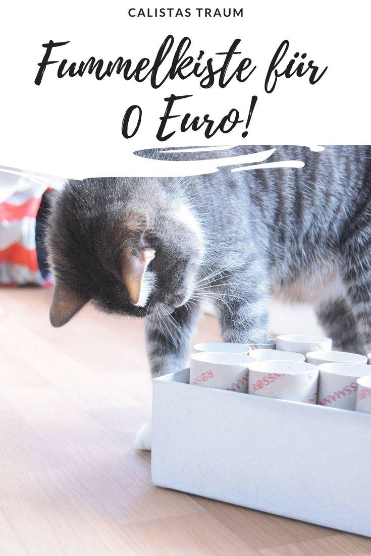 """DIY cat toy """"Fummelkiste"""""""