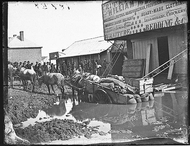 Horse and cart bogged in what was once a gold digging outside Meares flooded Criterion Store, Clarke Street, Hill End, Winter 1872 / American & Australasian Photographic Company