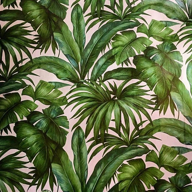 Lush Leafy Wallpaper By Versace Official