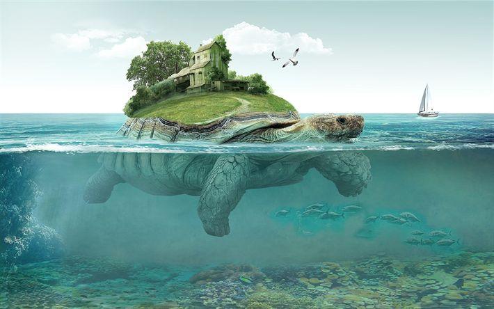 Hämta bilder turtle, havet, ön, hus, underwater world