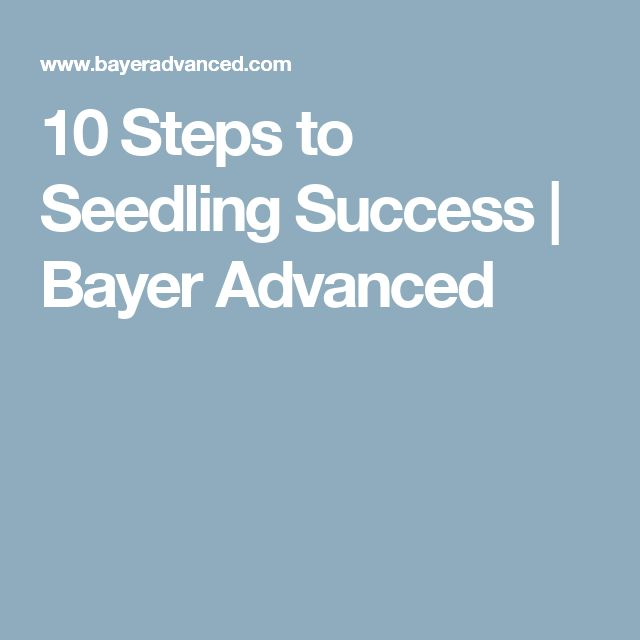10 Steps to Seedling Success   Bayer Advanced
