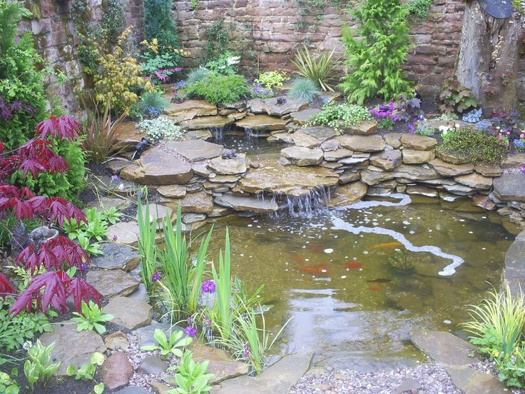 17 best images about water gardens on pinterest garden for Small pond ideas pictures