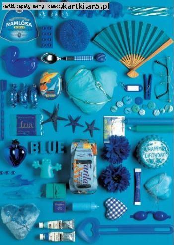 Brilliant Blue kompozycja i fotografia Andrea Tilk