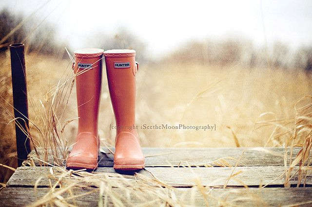 pumpkin boots: Shoes, Country Photography, Creative Example, Pumpkin, Hunters Boots, Still Life Photography, Hunters Rain, Hunter Rain Boots, Daisies Dukes