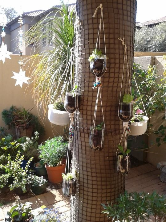 Pot plants made from soda bottles with bits of beads on them.  And those starry things that you can see are also beaded stuff!