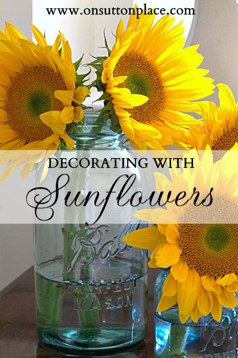 Ideas and tips for decorating with sunflowers including ways to display them and tips for keeping them fresh.