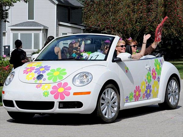 Multiple colors of daisy decals great attention getter