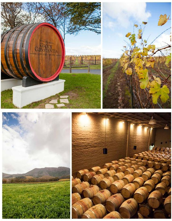 The Constantia Winelands in the heart of Cape Town are one of the city's hidden gems! We give you the inside scoop :) #travel #capetown #luxurytravel #winelands #foodie #southafrica #constantia