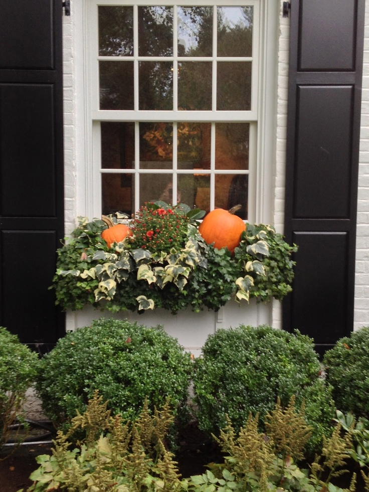 17 Best Images About Inspiring Window Boxes On Pinterest