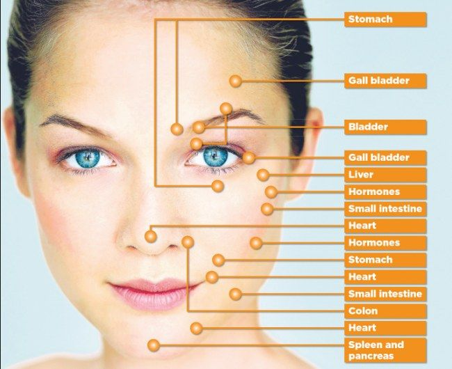Face Reflexology - Where acne erupts can tell you a lot about what's going on in your body. Certain areas of your face are linked to specific organs. If you have acne, matching the areas you most often break out with the corresponding organ can tell you how to focus your efforts nutritionally.