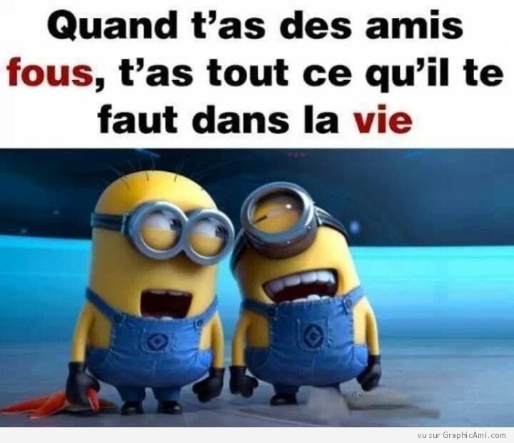 17 best images about citation des minions on pinterest image search facebook and blog. Black Bedroom Furniture Sets. Home Design Ideas