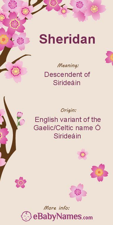 """Meaning of Sheridan: Sheridan is an English transcription of the name Ó Sirideáin, which is a Gaelic/Celtic surname meaning """"descendent of Sirideáin"""