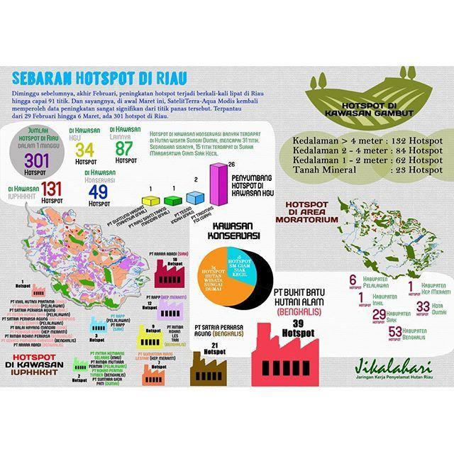 @jikalahari mencatat sebaran hotspot yang ada di Riau periode 29 Februari hingga 6 Maret 2016 mencapai 301 titik panas. Data ini diperoleh dari satelit Terra-Aqua Modis dengan melihat sebaran hotspot pada daerah konsesi IUPHHK, HGU dan Konservasi. Selain itu Jikalahari juga memetakan bahwa hotspot-hotspot tersebut ada yang muncul di kawasan gambut dan mineral.  #hotspot #riau #hotspotdiriau #arealkonsesi #iuphhk #hgu #konservasi #gambut #mineral #APRIL #APP #PTRAPP #PTAraraAbadi #infografis…
