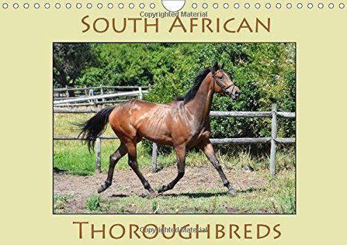 South African Thoroughbreds (Wall Calendar 2017 DIN A4 La... https://www.amazon.de/dp/132514083X/ref=cm_sw_r_pi_dp_Qj5ExbQJS44MW