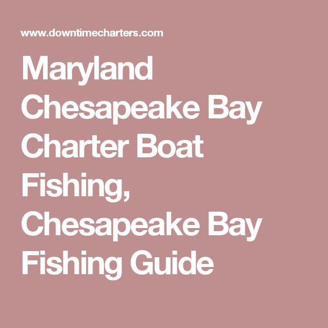 Maryland Chesapeake Bay Charter Boat Fishing, Chesapeake Bay Fishing Guide