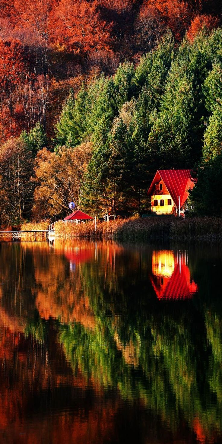 Colores de otoño en Mehedinti Montañas, Rumania