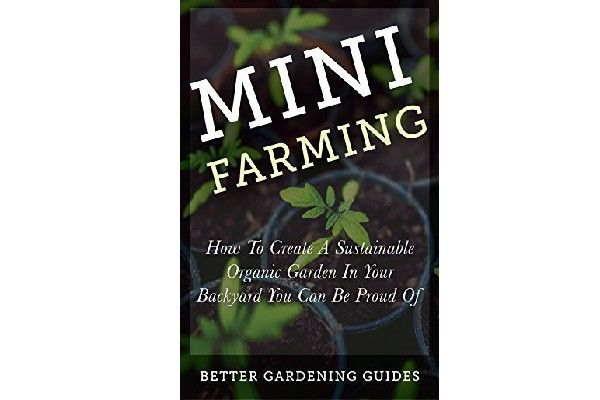 1000 ideas about square foot gardening on pinterest