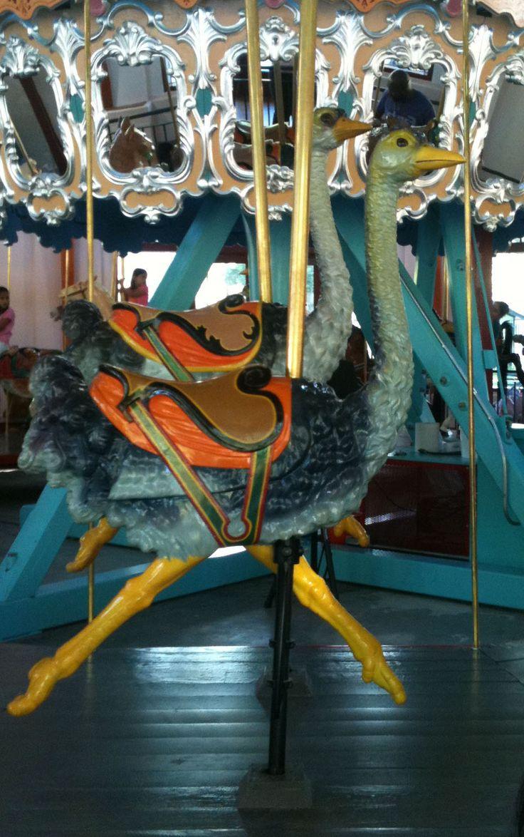 National carousel association denver zoo carousel african wild dog - Pullen Park Carousel File Pullen Park Carousel Animal Ostrich Jpg Wikimedia