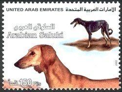 Stamp: Saluki (Canis lupus familiaris) (United Arab Emirates) (Fauna) Mi:AE 676,WAD:AE005.02