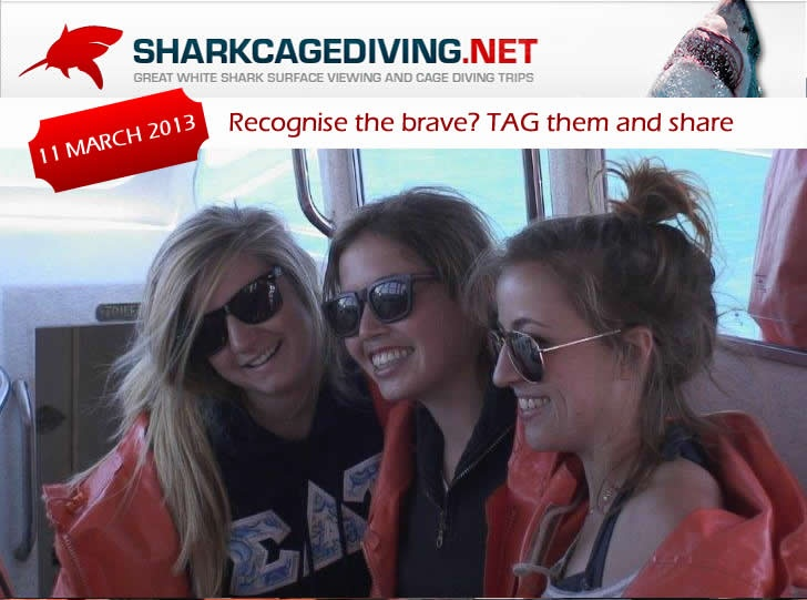 Having fun on the boat: Great White Shark Tours