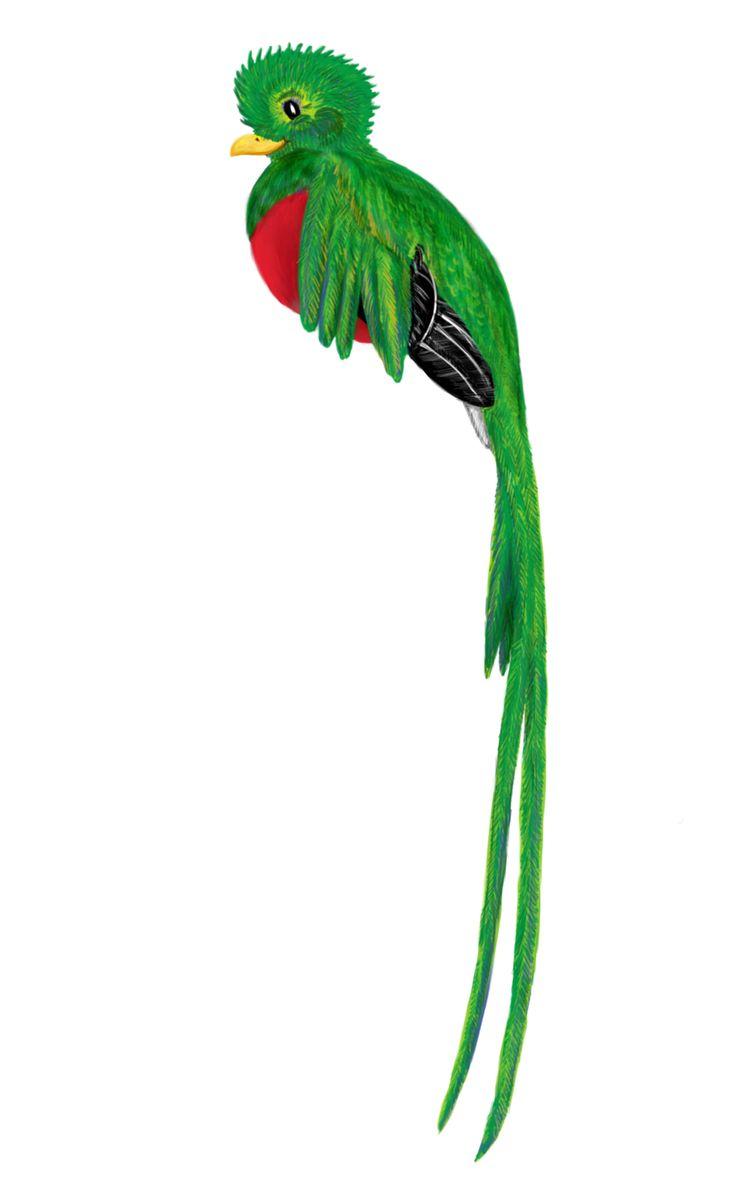 Quetzal Mayan Symbol 298 best Aztec/...