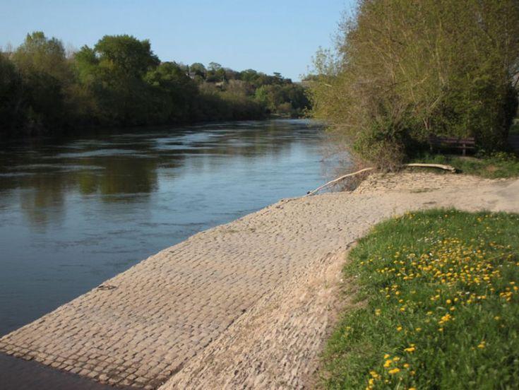 L'île de Behuard, sur la Loire