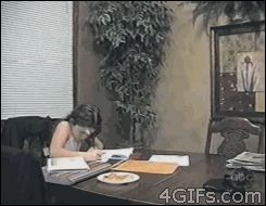Let me help you with your homework. | 12 Funny Cat GIFs (Plus A Bonus Video)