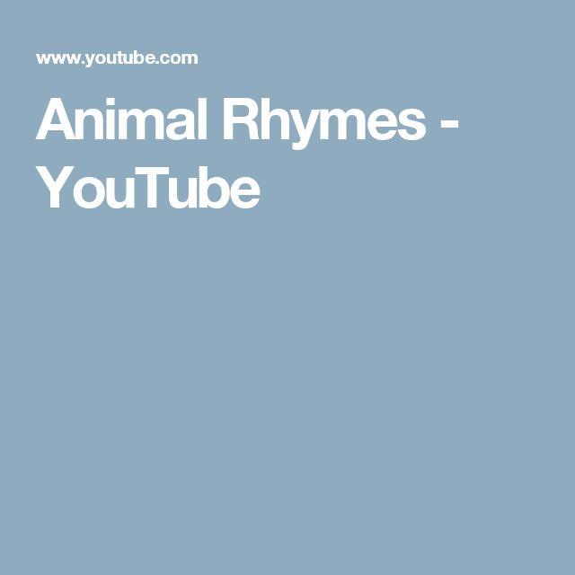 Animal Rhymes - YouTube