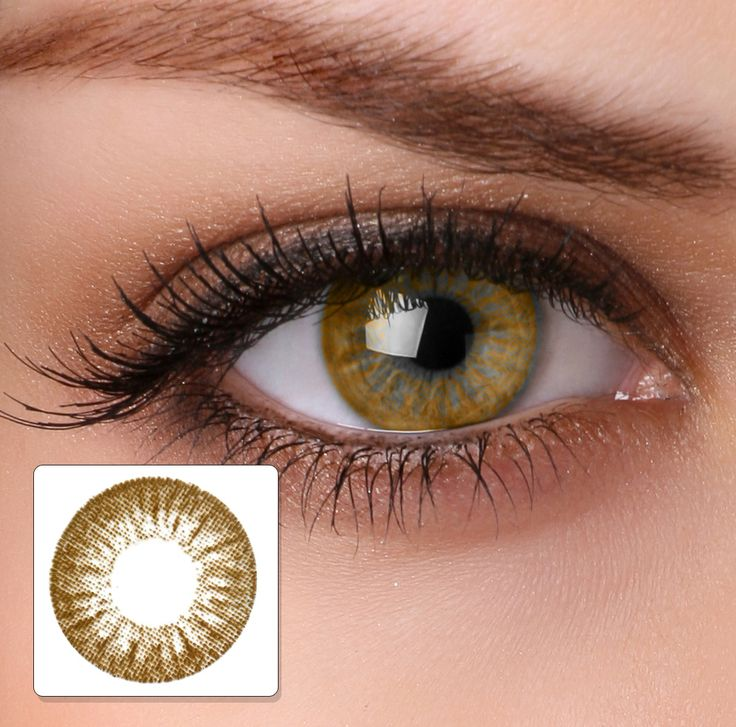 contacts for brown eyes | contact lenses colour contact lenses ha12 light brown price € 9 95 ...