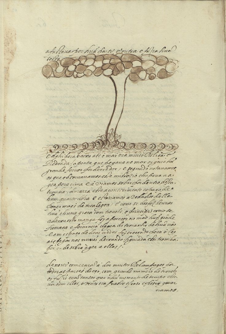 bpe-cod-cxv-1-24_0134 - João de Castro (1500-1548) «[Roteiro da Viagem que D. João de Castro fez a primeira vez que foi à India no ano de 1538]». [Anterior 1578]. BPE COD. CXV 1/24