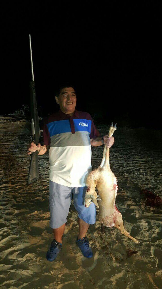 Maradona tiene en la mano una cría de Oryx árabe. Le disparó a una cría, no a un ejemplar adulto, que puede ser peligroso si es atacado.