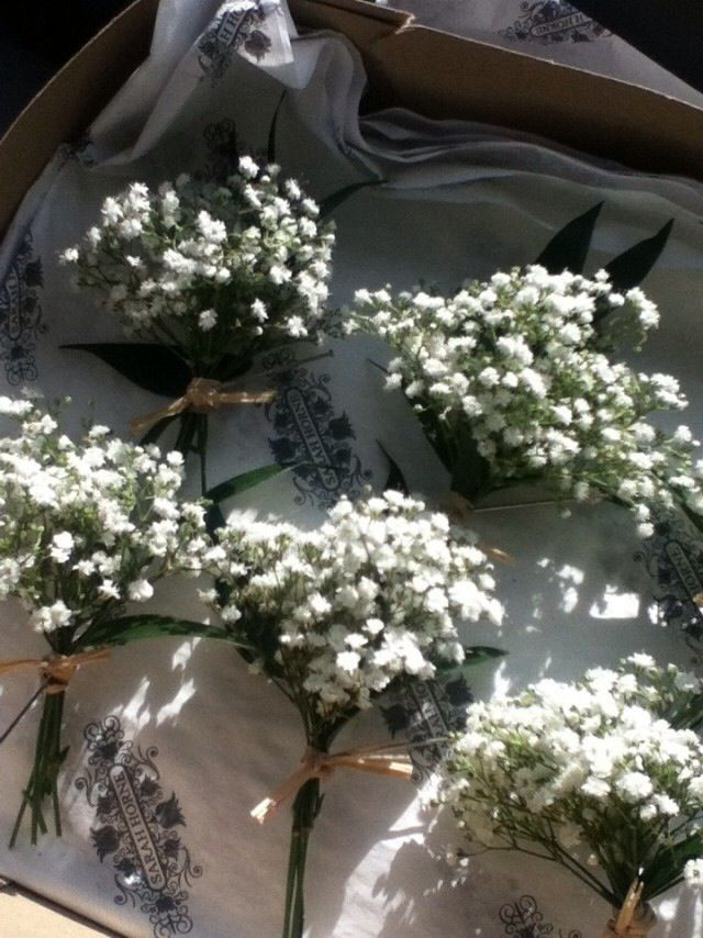 Gypsophila button holes tied with dried rushes - so lovely!