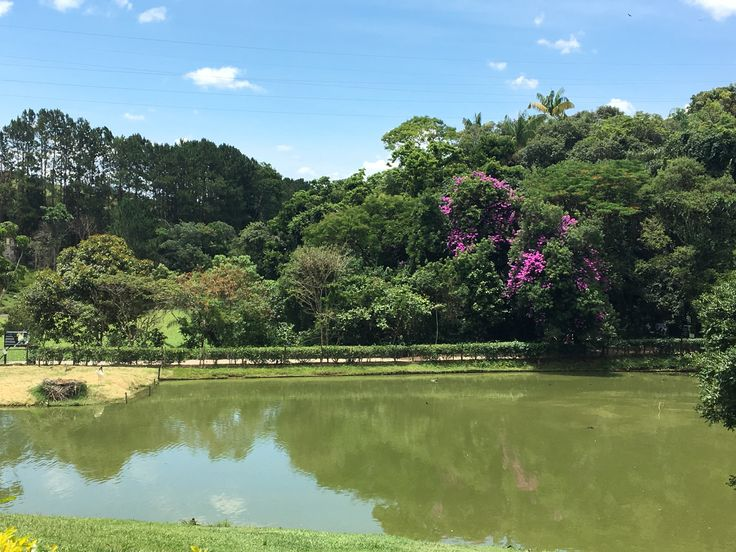 Zoo Itatiba/SP                      Além Brasil by Erica Cabral