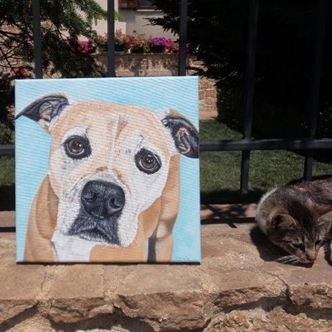www.etsy.com/listing/219798890/custom-portrait-pet-portrait 56 Likes (@oilpaintingschrista) on Instagram: