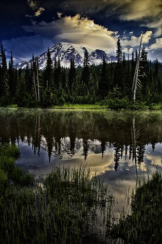 Mount Rainier from Reflection Lake; photo by Bern Harrison