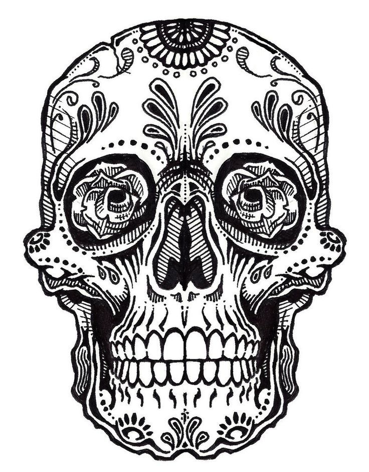 It's just a photo of Exceptional Black And White Sugar Skull Drawing
