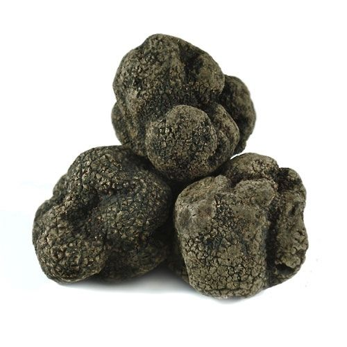 Fresh Black Chinese Truffles - 3 oz