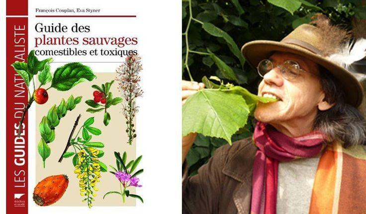 Les 175 meilleures images du tableau cueillettes sauvages - Cuisine sauvage couplan ...