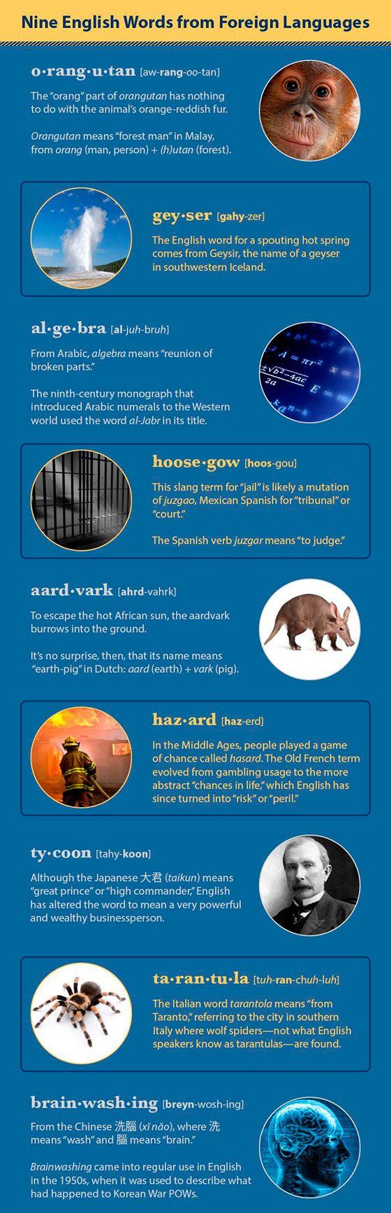 9 английских слов, пришедших из других языков