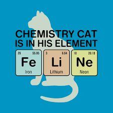Image result for chemistry cat