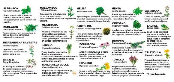 12 best food and drink infographics images on pinterest - Plantas aromaticas en la cocina ...
