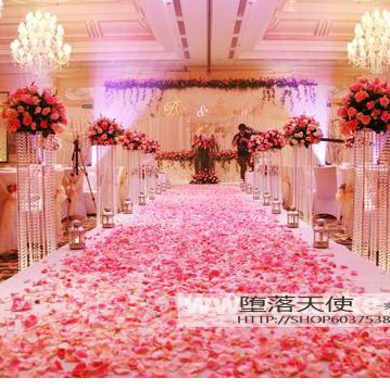 98 best planning a wedding images on pinterest bridal gowns decoration idea cheap rose petals on sale at bargain price buy quality wedding gifts and junglespirit Images