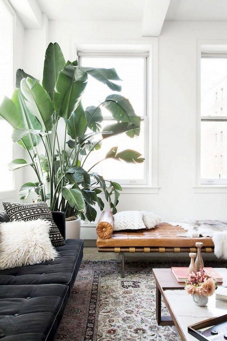 51 Smart Ideas To Display Indoor Plants Indoor Plants Pl