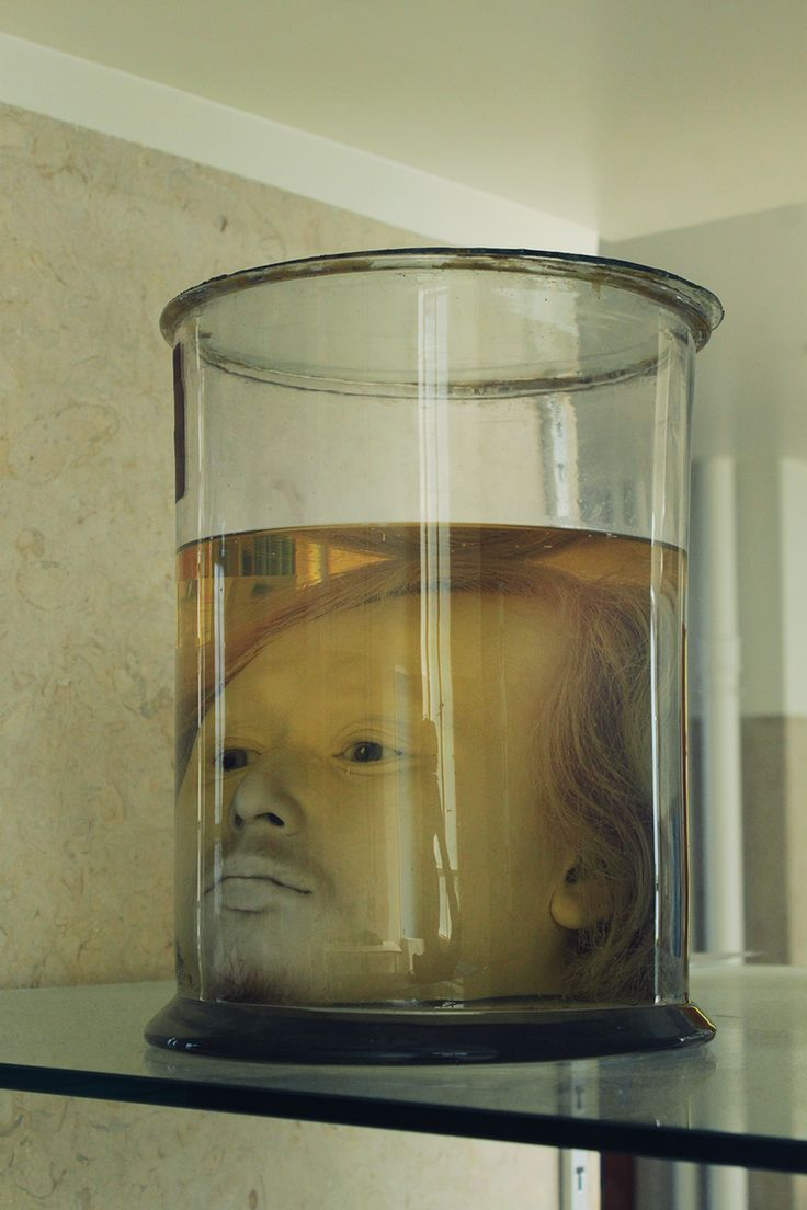 See an Alarmingly Well-Preserved Human Head in a Jar at This Portuguese University - Atlas Obscura