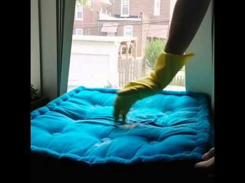 Tired of your cat or dog's shedding? This #tip can help you clean up the hairy situation! #PetLifeHack #Video