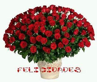 flores con bonitos mensajes de cumpleaos