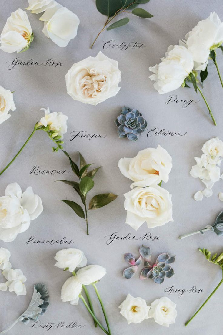 Types of Wedding Flowers by Colour Wedding flower types