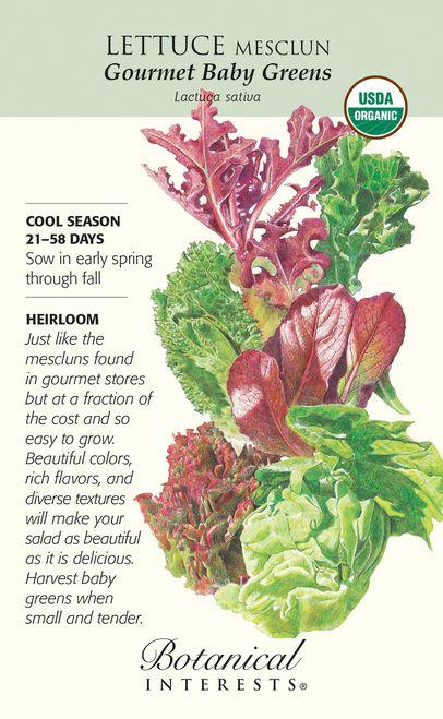 Mesclun Gourmet Baby Greens Lettuce Seeds - 6 g - Organic - Botanical Interests