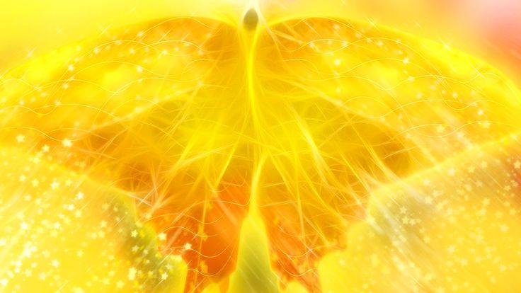 yellow fractal butterfly - http://1080wallpaper.net/yellow-fractal-butterfly.html