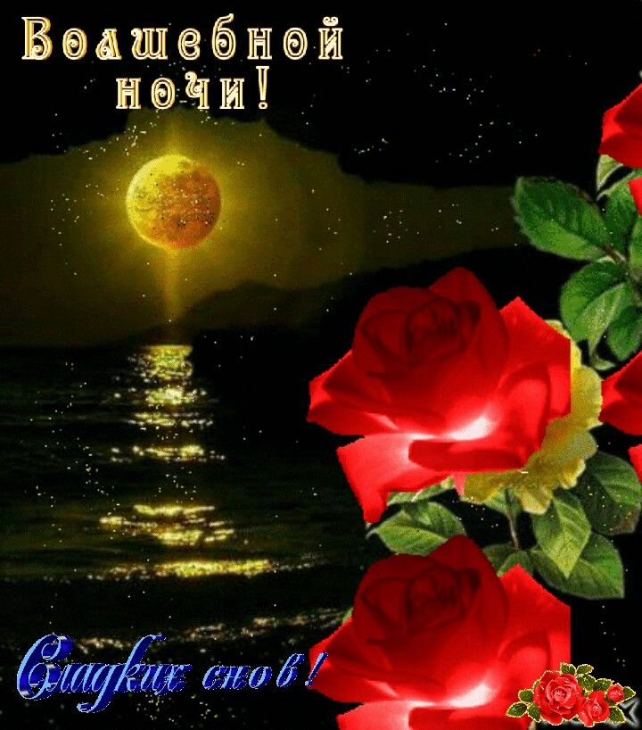 Картинки, спокойной ночи картинки с цветами красивые
